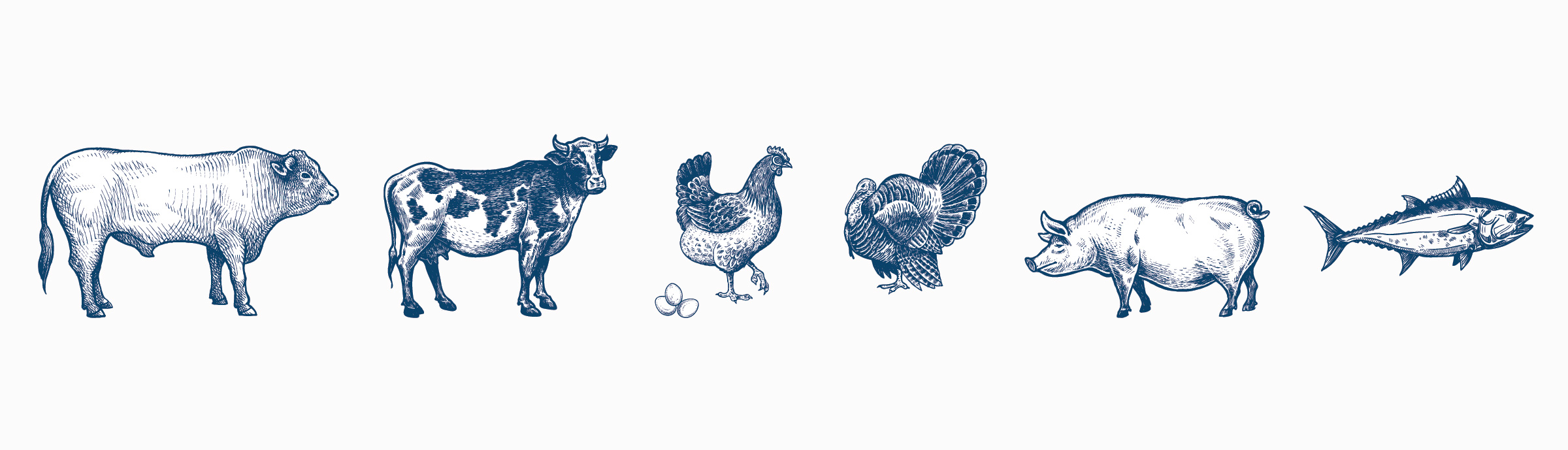 Livestock animals beef, dairy cow, layer hen, poultry, swine, aquaculture